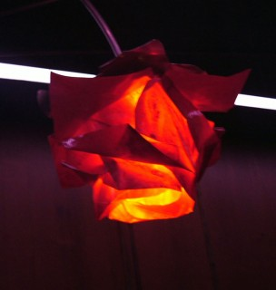 origami rose lighting